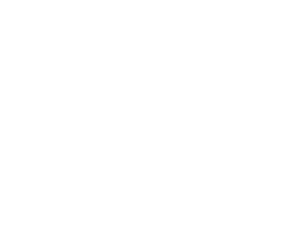 Born to Lift e.V.